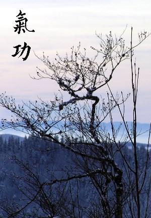 Qi Gong Grundlagen